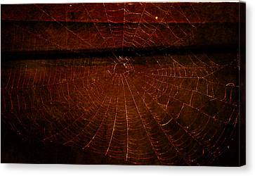 Canvas Print featuring the photograph Dark Web by Robin Dickinson