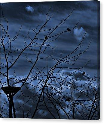 Darkblue Canvas Print by Amr Miqdadi