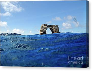Darwin's Arch By Sea Level Canvas Print by Sami Sarkis
