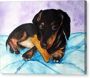 Dashshund Baby Canvas Print