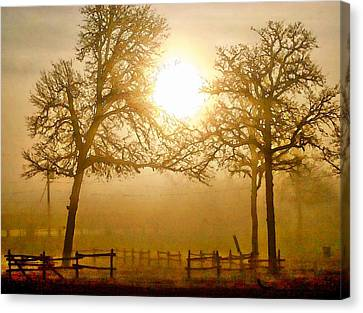 Dawn In The Country Canvas Print by Carrie OBrien Sibley