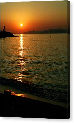 Dawn Swimmer Canvas Print by Paul Cowan