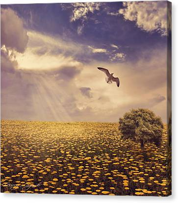 Flying Seagull Canvas Print - Daydream by Lourry Legarde