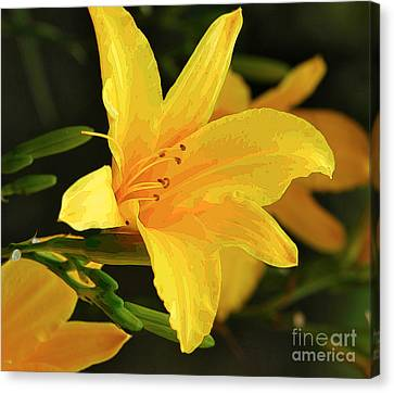 Daylilly 1 Canvas Print