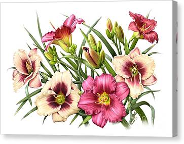 Daylily Bouquet - Rubies Canvas Print by Artellus Artworks