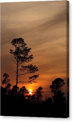 Canvas Print featuring the photograph Days Dusk by Cindy Haggerty