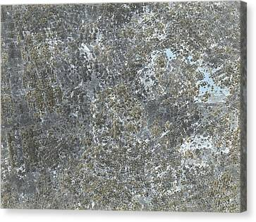Debris Field Canvas Print by Jacob Bettany