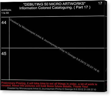 Debuting 50 Micro Artworks Part 17  Canvas Print by Phillip H George