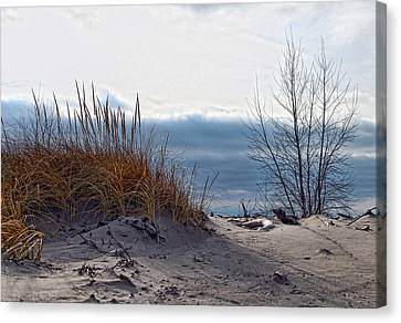 December Dune Canvas Print by Peter Chilelli
