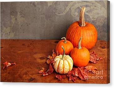 Canvas Print featuring the photograph Decorative Fall Pumpkins by Verena Matthew