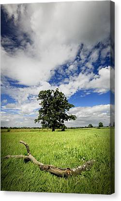 Canvas Print featuring the photograph Deep Blue Wonder by John Chivers