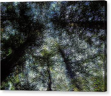 Deep Wood Canvas Print by Peri Craig