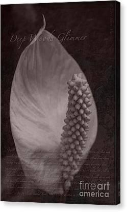 Deep Woods Glimmer Canvas Print