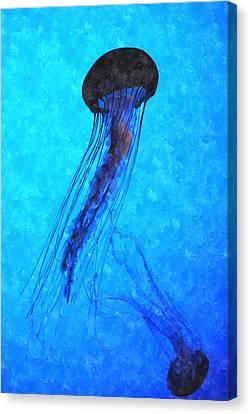 Deepsea Serenity Dswc Canvas Print