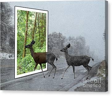 Deer Crossing Canvas Print by Methune Hively