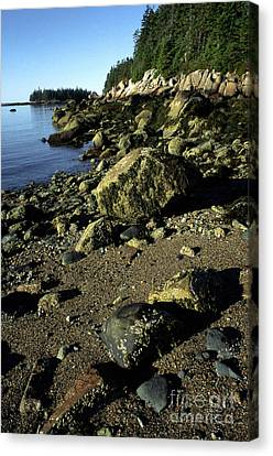 Deer Isle And Barred Island Canvas Print by Thomas R Fletcher