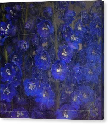 Delft Blues Canvas Print by Lynn Wohlers