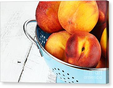 Delicious Peaches Canvas Print by Stephanie Frey