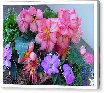 Canvas Print featuring the photograph Delightful Potpourri Of Pastels by Frank Wickham