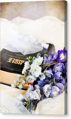 Delphiniums And Bible Canvas Print by Stephanie Frey