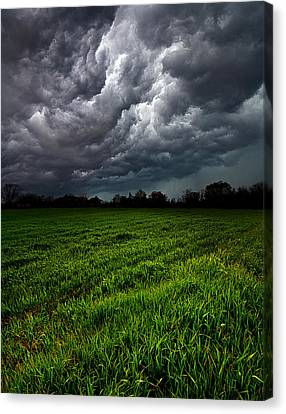 Deluge Canvas Print by Phil Koch