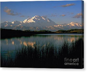 Canvas Print featuring the photograph Denali by Doug Herr
