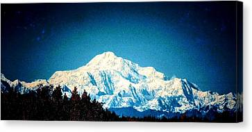 Denali In The Fall Canvas Print
