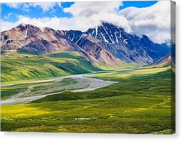 Denali National Park, Alaska Usa Canvas Print