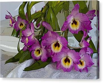 Dendrobium Delight Canvas Print by Joanne Smoley