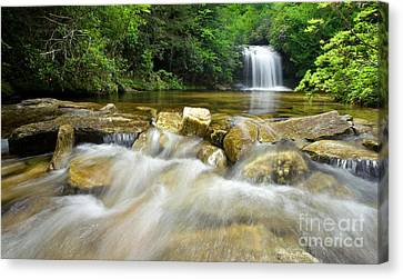 Dense Forest Waterfall Canvas Print by Matt Tilghman