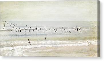 Departure     Canvas Print by Karen Lynch