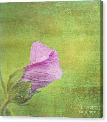 Deploiement - 01ct02b Canvas Print by Variance Collections