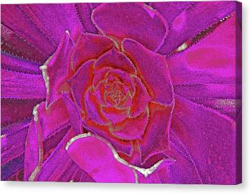 Desert Bloom Canvas Print by James Mancini Heath