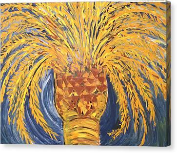 Desert Date Palm Tree Canvas Print