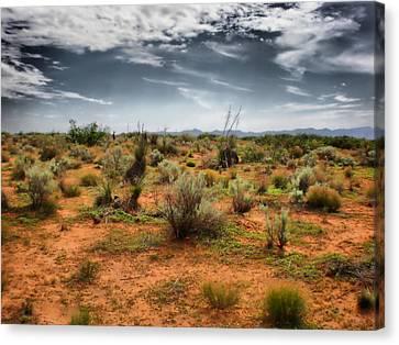 Desert Of New Mexico Canvas Print by Thomas  MacPherson Jr
