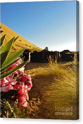 Desert Rose Canvas Print by Nabucodonosor Perez