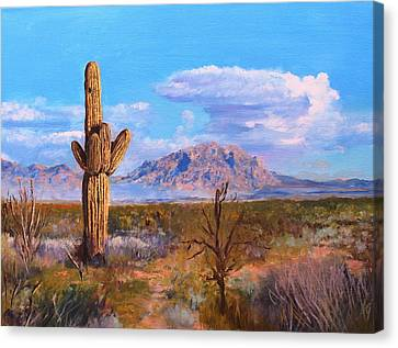 Desert Scene 4 Canvas Print by M Diane Bonaparte