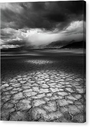 Desert Storm Canvas Print by Tim Gallivan