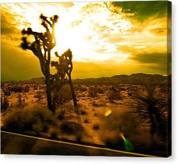 Desert Sunset Canvas Print by Aurica Voss