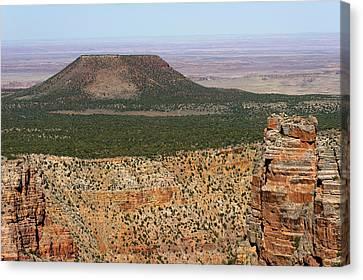 Desert Watch Tower View Canvas Print by Julie Niemela