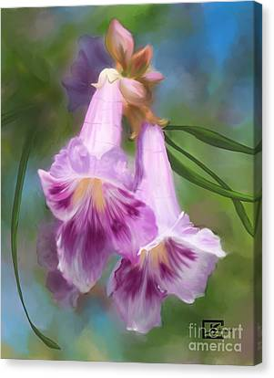 Desert Willow Floral Wall Art Canvas Print by Judy Filarecki