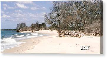 Deserted Island Canvas Print