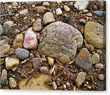 Designs By Nature - Fp3 - Rocks Canvas Print by Felix Zapata