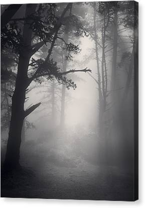 Desire Realized Canvas Print by Mark Singles