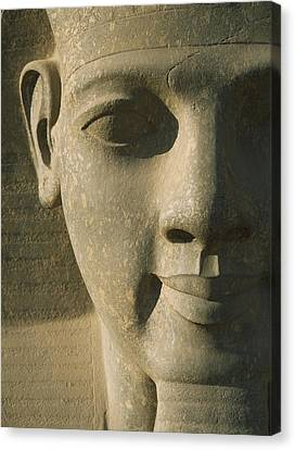 Detail Of Pharaoh Head Canvas Print by Axiom Photographic
