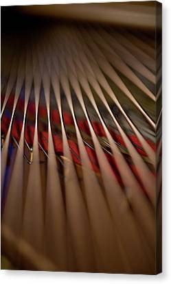 Detail Of Piano Strings Canvas Print by Christopher Kontoes