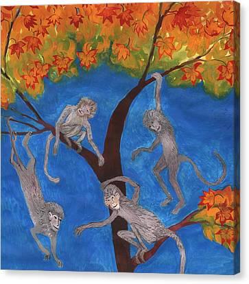 Japanese Maple Canvas Print - Detail Of Puzzled Monkey Tree by Sushila Burgess