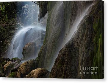 Detailed View Of Gorman Falls Canvas Print by Keith Kapple