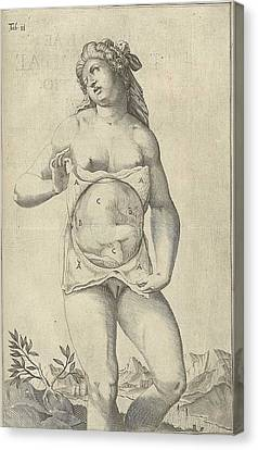 Development Of The Fetus. Female Figure Canvas Print by Everett