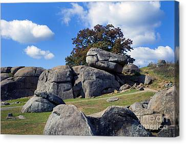 Devil's Den Formation 25 Canvas Print by Paul W Faust -  Impressions of Light